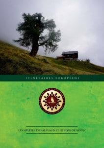 Les mélèzes de Balavaud et le bisse de Saxon