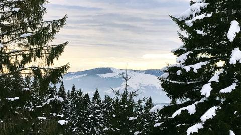 L'Alsace au temps de Noël